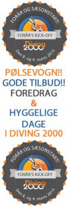 Dykker forår´s KICK-OFF i Diving 2000
