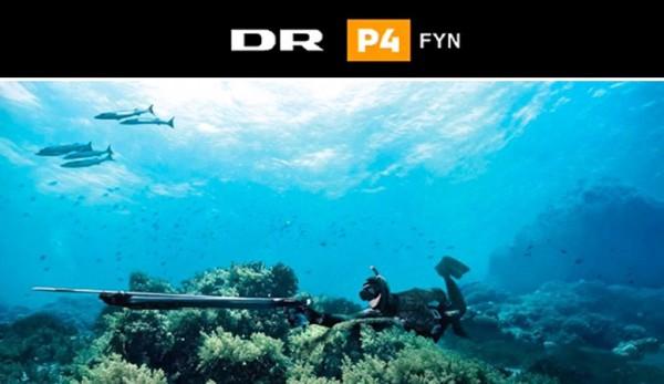 DR P4 Fyn logo+foto